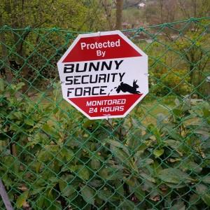 cartello villa conigli