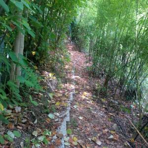 percorso basso villa conigli