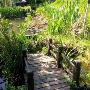 ponte sul laghetto villa conigli